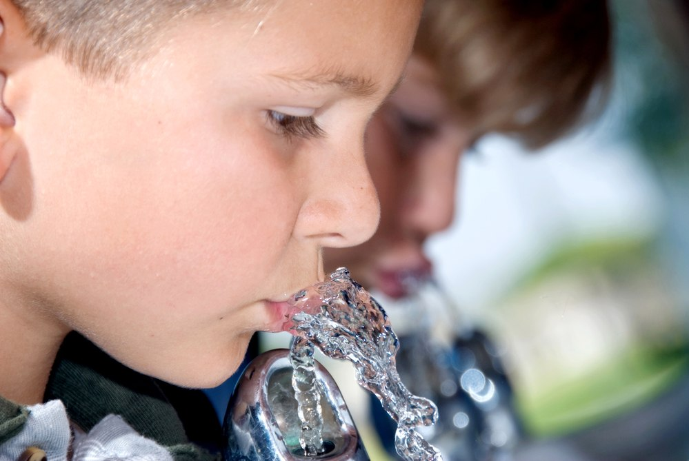 The Impact of the Exposure to Lead in Drinking Water